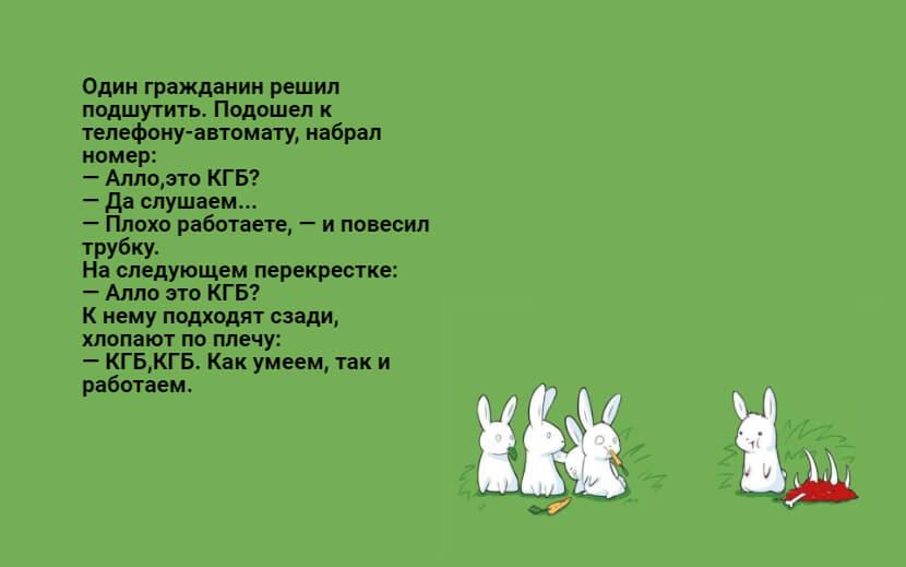 На фото изображен текст анекдота №1.