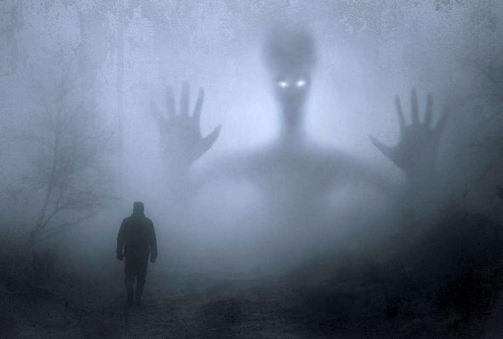 На фото изображен человек и инопланетянин.