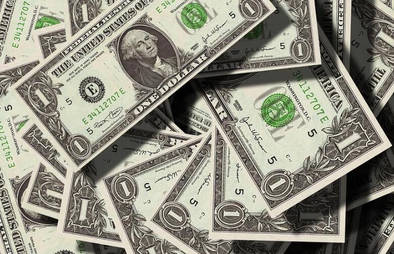 На фото изображены доллары.