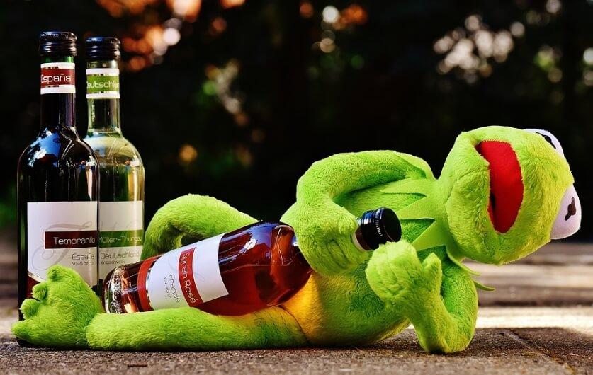 Жаба с бутылкой алкоголя в обнимку.